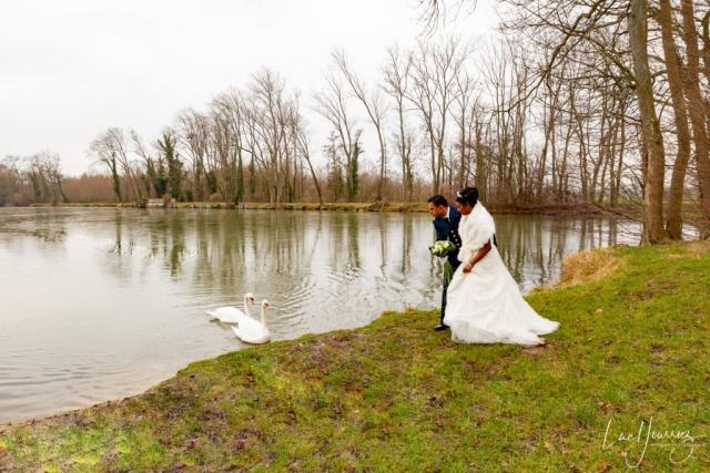 mariés avec un cigne